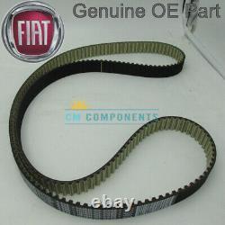 Fits Fiat Croma Alfa 2.4JTD 159 166 Timing Belt + Water Pump Kit 98-11 71771592