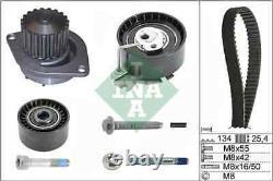 Ina Water Pump & Timing Belt Set 530037930 Fits Citroen